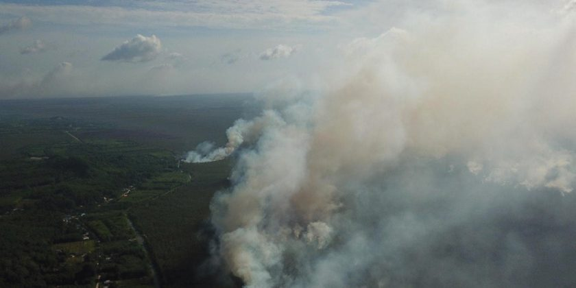 Overview of Forest Fire in Thailand – Part II