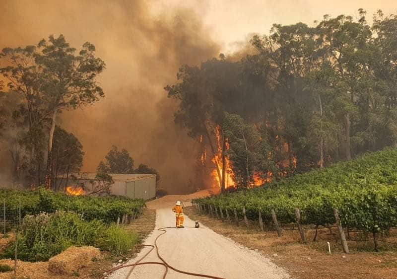 Figure 1: 2019 Mega-bushfire in Australia